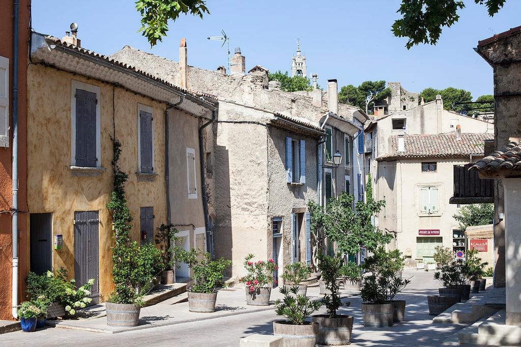 Hôtel Restaurant lArbre de Mai