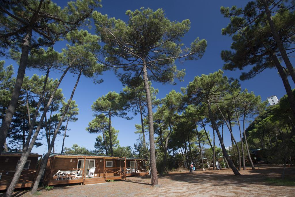 PuntAla Camp and Resort